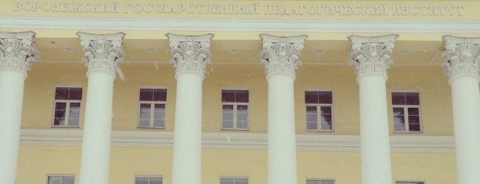 Воронежский государственный педагогический университет is one of Russian Startup Tour 2014. Этап 1: Поволжье.