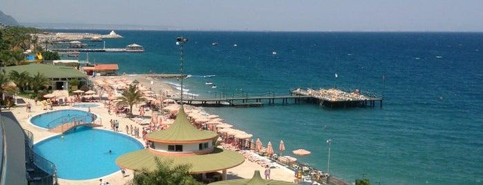 Yelken Blue Life Spa & Wellness Hotel is one of Lugares guardados de Fatih.