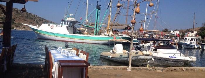 Gümüşlük Sahili is one of สถานที่ที่ Aydan ถูกใจ.