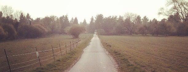 Eberstadt is one of Orte, die Jasmeen gefallen.