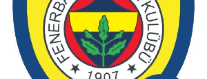 Fenerbahçe SK Badge