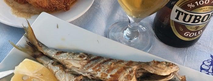 Rota Balık Restaurant is one of TC'ın Beğendiği Mekanlar.