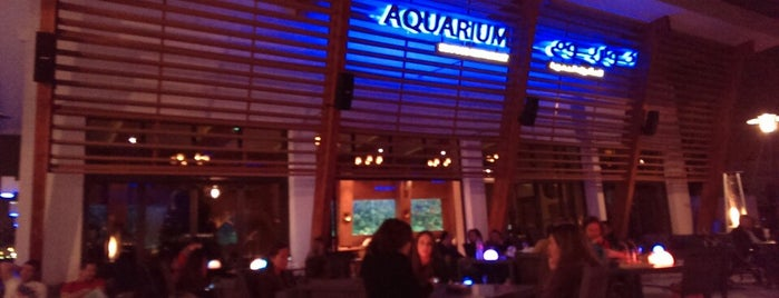 Aquarium Restaurant is one of Hct.