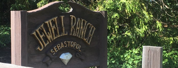 Sebastopol, CA is one of North San Fransisco.
