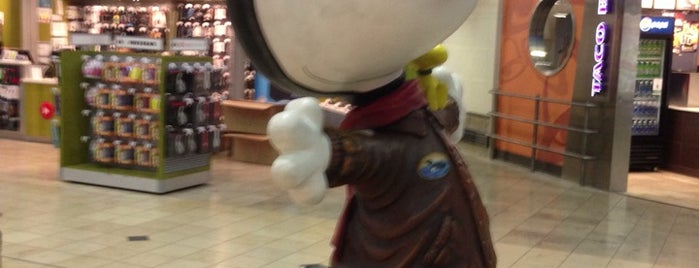 Snoopy Statue is one of Locais curtidos por Tracy.