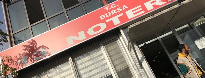 Bursa 13. Noter is one of Locais curtidos por Murat karacim.