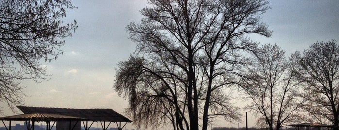 Воронцовський пляж is one of Locais curtidos por Lenyla.
