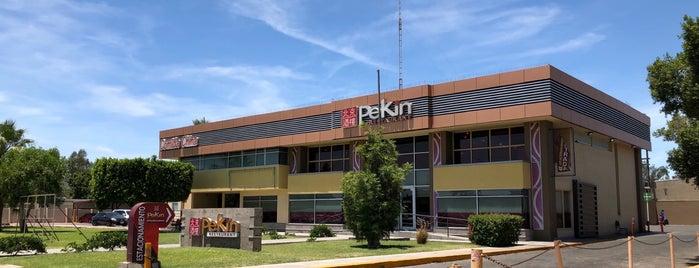 Pekín is one of Orte, die Alejandro gefallen.