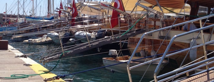 Milta Bodrum Marina is one of Bodrum Bodrum.