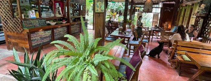 Om Garden Cafe is one of Alan'ın Beğendiği Mekanlar.