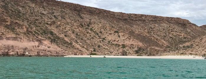 Isla Espíritu Santo is one of Locais curtidos por Gabriela.