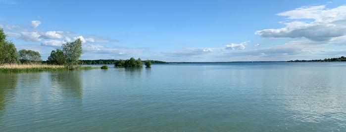 Parc Naturel Regional de la Fôret d'Orient is one of Robin 님이 좋아한 장소.