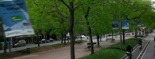 Avinguda de Josep Tarradellas is one of สถานที่ที่ Sandra ถูกใจ.