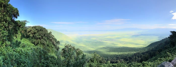 Ngorongoro Conservation Area is one of Geziyorum Dünya Işte.