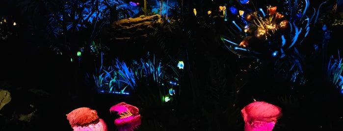 Pandora - The World of Avatar is one of Fernando Viana'nın Beğendiği Mekanlar.
