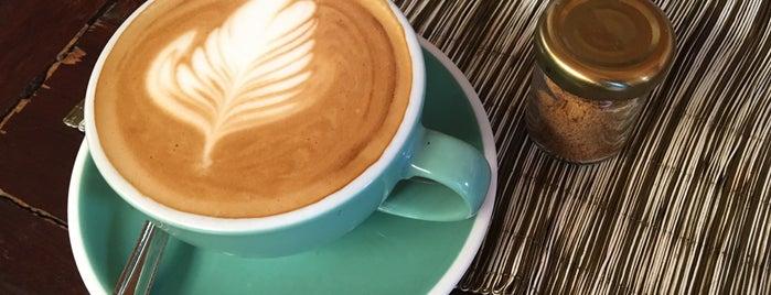 IKARO CAFE is one of Lugares favoritos de Jimena.