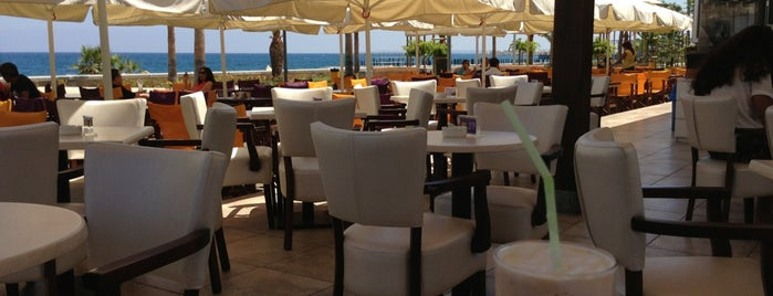 Yellow Cafe Delice is one of Limassol restaurants.