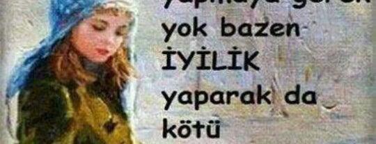 Susedo Ümraniye Sporcu Gıdaları is one of Yunusさんのお気に入りスポット.