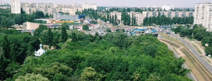 Парк «Юність» is one of Lieux qui ont plu à Светлана.
