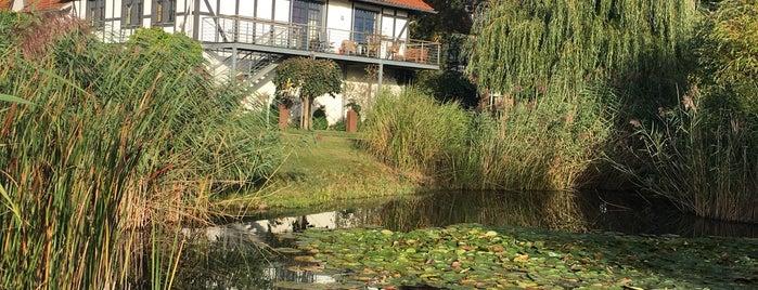Hotel GUT Bardenhagen is one of สถานที่ที่ Jessica ถูกใจ.