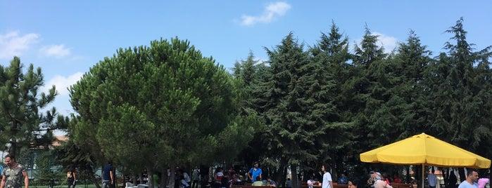 Koruncuk Bolluca  çocuk köyü is one of Oğuz Kağan'ın Beğendiği Mekanlar.