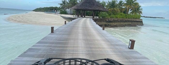 Island Hideaway At Dhonakulhi Resort Haa Alifu Atoll is one of My Hotels.