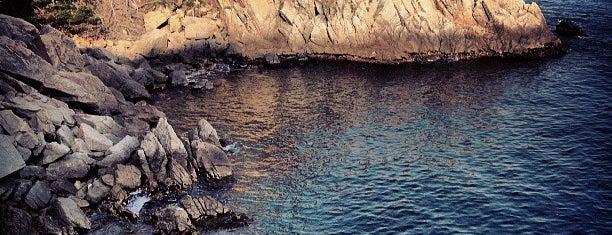 Platja d'es Codolar is one of Playas de España: Cataluña.