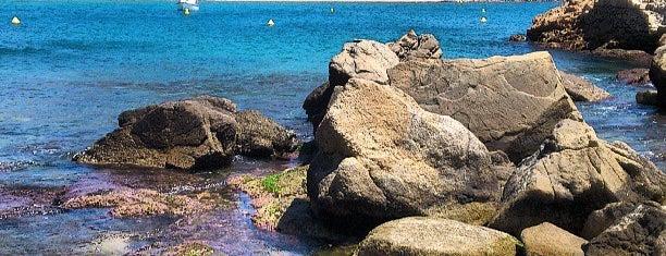Sa Palomera is one of Playas de España: Cataluña.