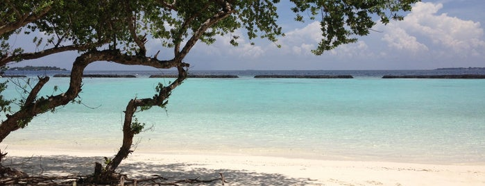 Kurumba Island beach, Maldives is one of Cananさんのお気に入りスポット.