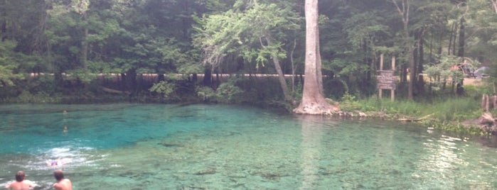 Ginnie Springs Outdoors Campground Site #79 is one of Florida Springs.
