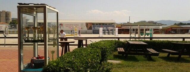 İzmir Atlı Spor Kulübü is one of spor+dans+kultur.