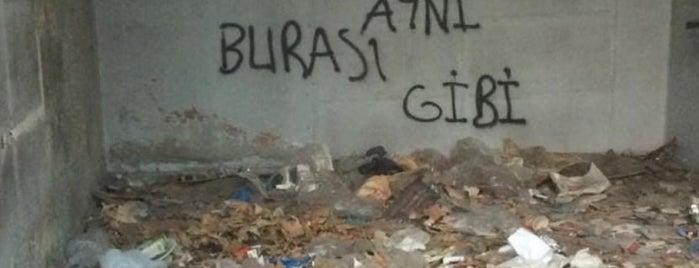Makara Giyim is one of Orte, die Erkan gefallen.