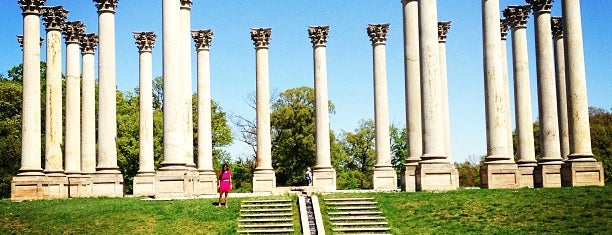 National Capitol Columns is one of DC To Do.