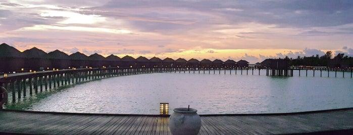 Olhuveli Beach & Spa Resort is one of Posti che sono piaciuti a Cagla.