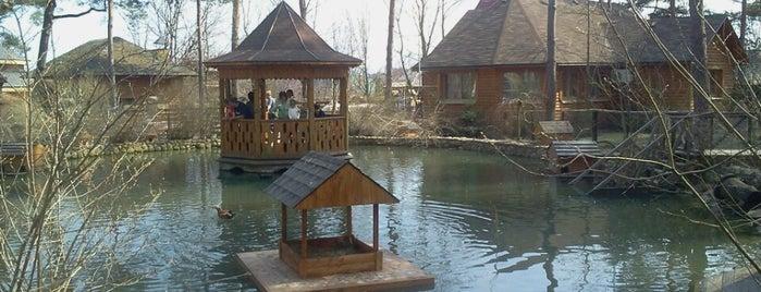 Етнографічний комплекс «Українське село» is one of Persona : понравившиеся места.
