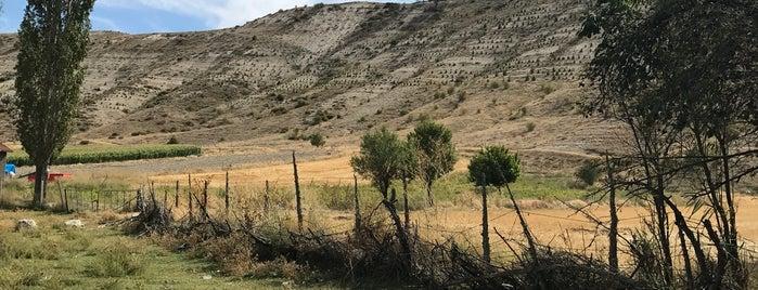 Özdenk Köyü is one of Alpu Belde ve Köyleri.