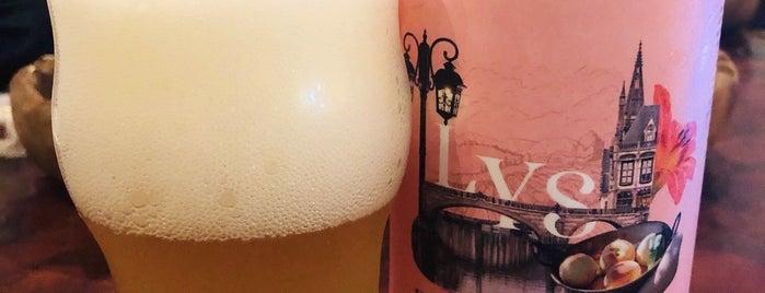 Owl Beer Pub is one of Bons drink!.