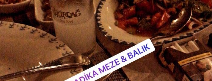 Radika Meze & Balık is one of Tempat yang Disukai Orçun.