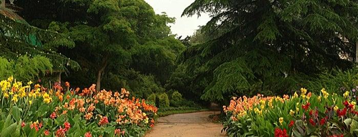 Никитский ботанический сад is one of Andrey'in Kaydettiği Mekanlar.
