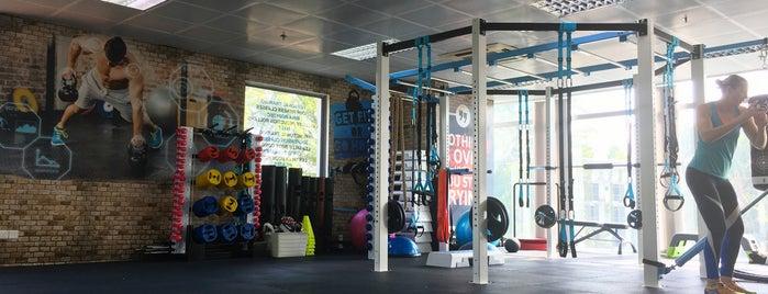 Core Synergy Studio is one of Fitness studios.