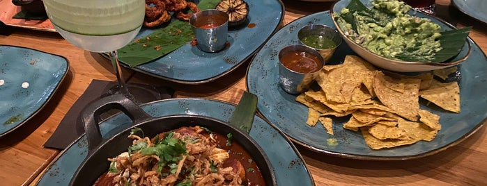 Frontera Cocina is one of Walt Disney World Eats And Drinks.