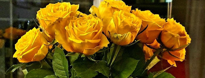HomeSense is one of leeds.