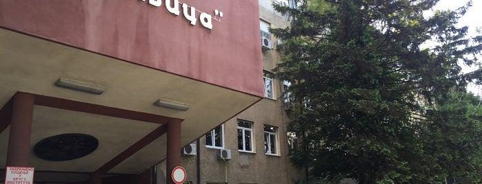 Institut za ortopedsko-hirurške bolesti is one of Lieux qui ont plu à Tijana.