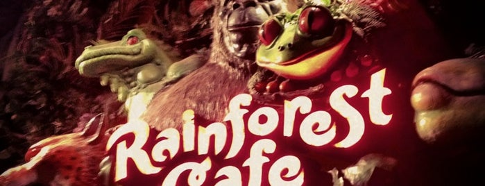 Rainforest Cafe is one of Gluten-free food.