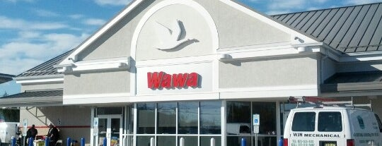 Wawa is one of Remember College?.