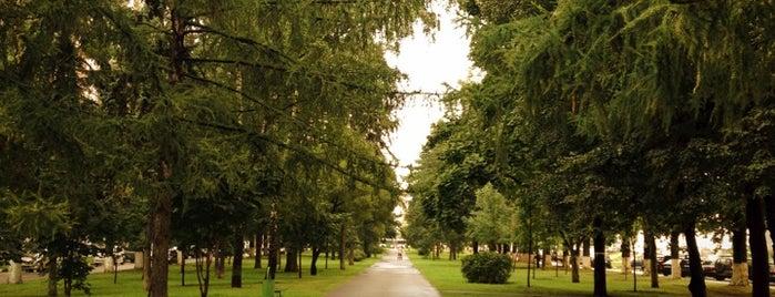 Новочерёмушкинская улица is one of Lieux qui ont plu à Таня.