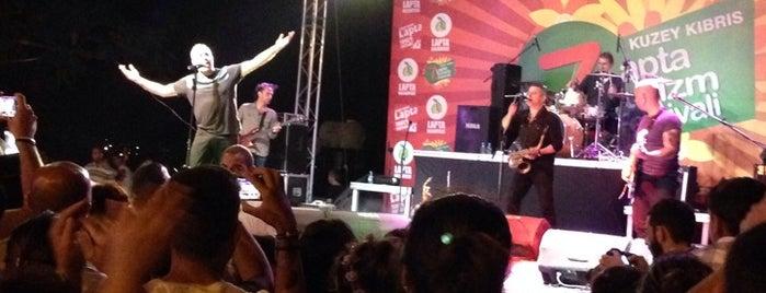 Lapta Festival Alanı is one of Posti che sono piaciuti a Halit.