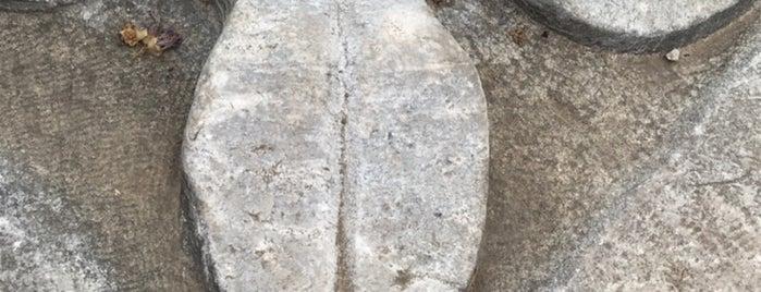 Kyzikos Antik Kenti is one of Bandırma.