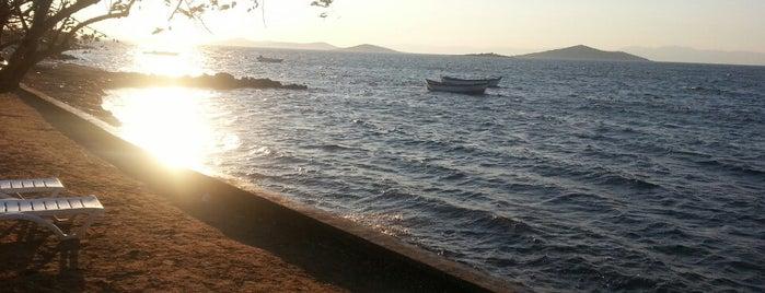 Düçmen Sahil is one of Balıkesir Plajları.