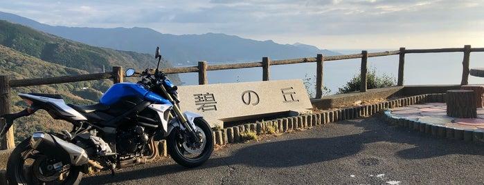 碧の丘 is one of 伊豆.